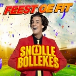 Snollebollekes - Feest Oe Fit  CD-Single