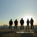 Los Lobos - Native Sons   CD